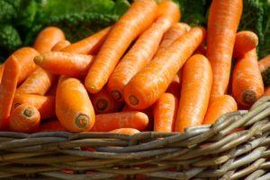 Morötter, huvudingrediens i morotsolja
